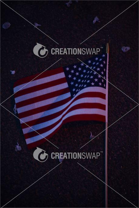 Flag at Night II (39067)