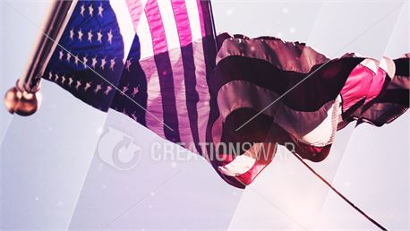 American Flag (39083)
