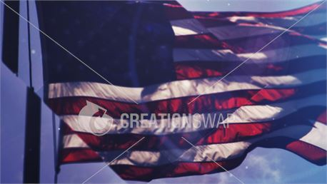 American Flag (39095)