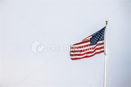 American Flag (39515)