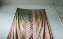 American Flag II