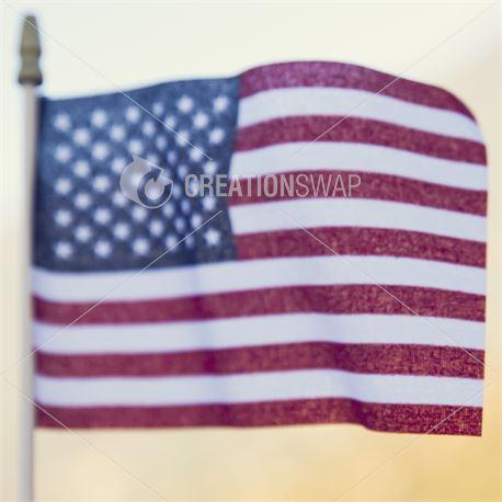 Patriotic Flag (39957)