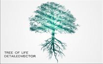 Detailed Tree Vector