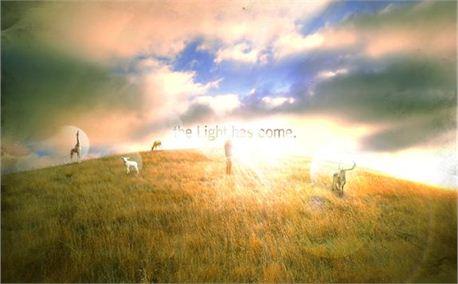 We are light! (4334)