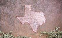 Texas Texture