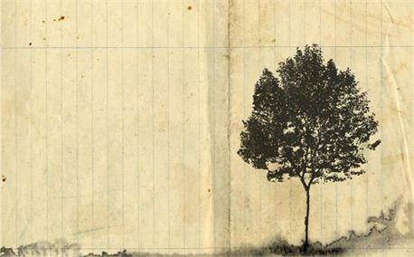 Paper tree (4957)