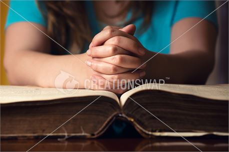 Young Woman Praying With Bible (40236)