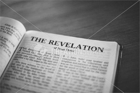 Revelation (40281)