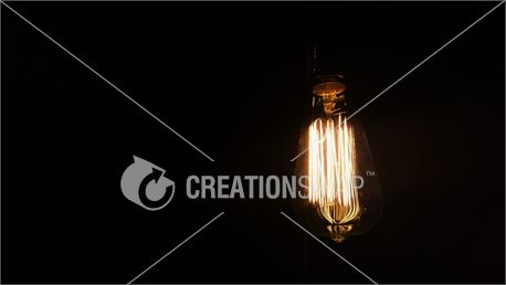 Edison bulb (41035)