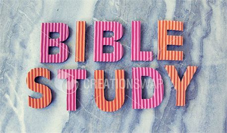 Bible Study Marble (41220)