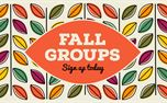 Fall Groups (41996)