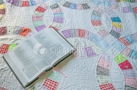 Bible on Quilt (43399)
