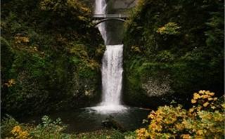Multnomah Falls, Fall Colors