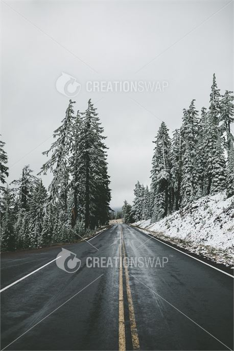 Winter Road (44932)