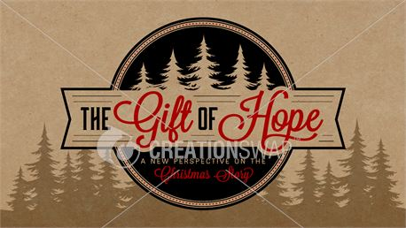 The Gift of Hope (45161)