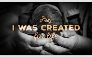 Created For Life
