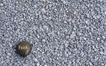 Faith on gravel (48281)
