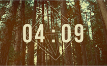 Forest Countdown