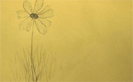 Flower (5870)