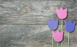 Pastel Wooden Tulips Set