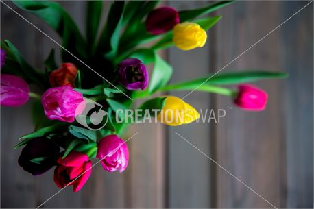 Tulip bouquet (50730)