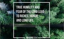 Proverbs 2:24
