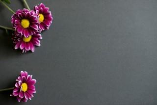 Flowers on Tile