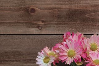 Springtime Mums on Wood