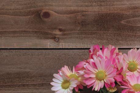 Springtime Mums on Wood (51779)