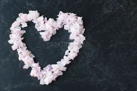 Open Heart (51822)