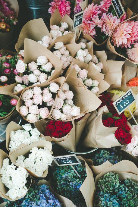 Flowers (52492)