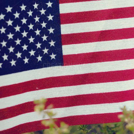 Patriotic Celebration 4 (54996)