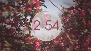 Flowers Countdown