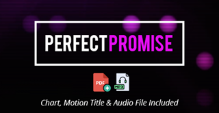 Perfect Promise Motion Lyrics