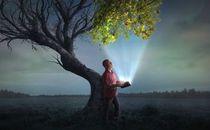 Bible shining life