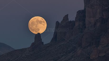 Full Moon (56912)