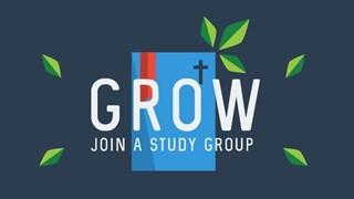Grow Study Groups