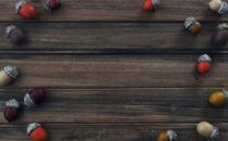 Acorn, Fall Background wood