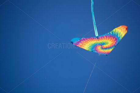 Kite 2 (58962)