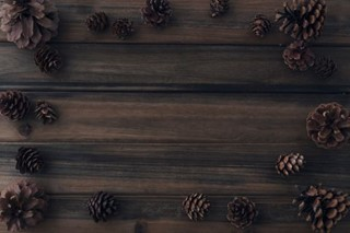 Pine cones on wood background