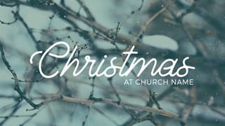 Modern Winter Christmas Series