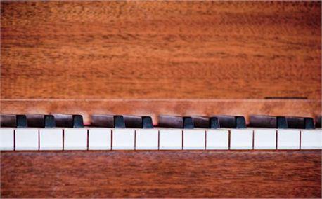Piano Keyboard (6232)