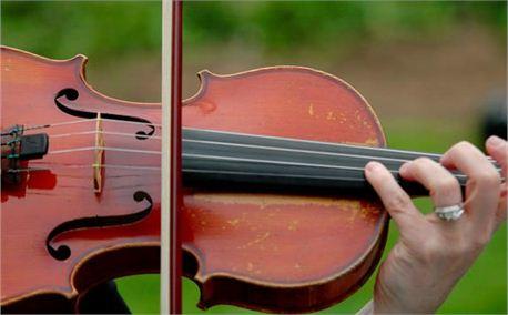 Violin (6238)