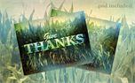 thanks (6991)