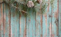 Winter greenery on wood