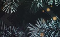 Christmas Glow Two