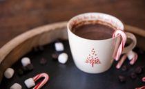 Hot Cocoa 11
