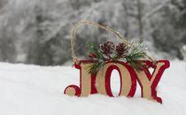JOY in Snow