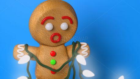 Gingerbread Lights (61616)