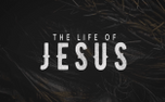 The Life of Jesus (61714)